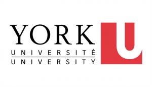 york-university